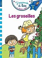 Sami et Julie CP Niveau 3 Les Groseilles d'Emmanuelle Massonaud