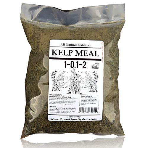 Kelp Meal - Organic Kelp Meal Natural Fertilizer (5 Pounds)