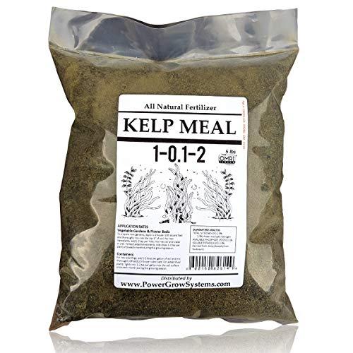 Kelp Meal - Organic Kelp Meal Natural Fertilizer (5 Pounds)