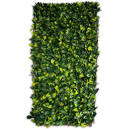 Greensmart Décor - Pantalla para Enrejado de Hojas de Lima Artificial, expansible, Color Verde