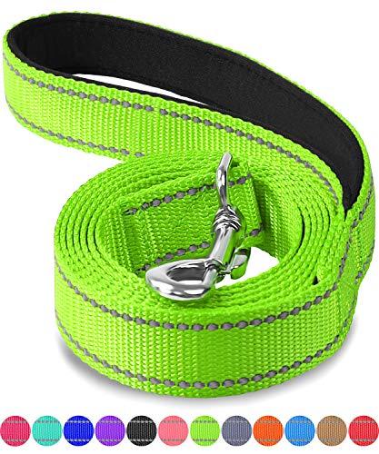 Joytale Hundeleine mit Bequemen Gepolsterten Griff, Reflektierend Hunde Leine für Ausbildung und Wandern, Nylon Hundeleine Für Mittlere und Große Hunde,1.8m × 2.5cm,Grün