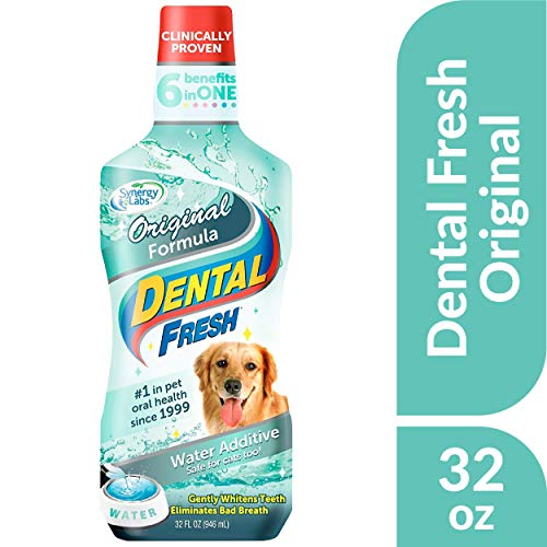10 best oxyfresh pet oral hygiene for 2020