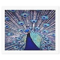 ヴィンテージ美しい孔雀 DIY デジタル絵画オイルハンギング絵画手作りホームウォールアート現代アートワークホームオフィス