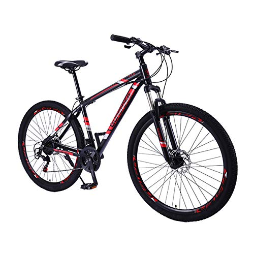 Vélo de Montagne 29\