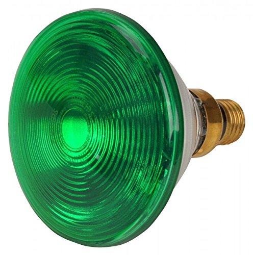 Philips PAR 38 E Ersatzbirne grün 150 Watt