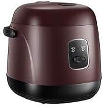 DYXYH Mini rijstkoker, box, rijst rijst elektrische lunch cooker klein, afneembare pan met antiaanbaklaag, warmhoudfuncti...