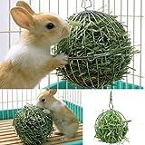 Case Cover Tierbedarf Heuraufe Nahrungsmittelkugel Edelstahl Überzug Gras Rack-Kugel für Kaninchen Meerschweinchen Hamster Supplies