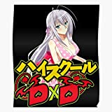 Highschool Pink School DxD Rossweisse in Anime Issei Cosplay Hyoudou Manga High Best Poster Wall Art for Home Decoration 16x24 Inches