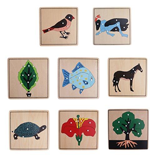 KESOTO 8 casse-tête de forme de plante animale de montessori pour des jouets tôt éducatioal d'enfants