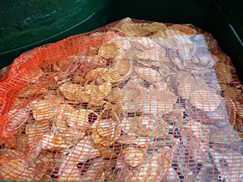 Air Aqua 10 KG Austernschalen für Teich und Aquarienfilter der KH und PH Stabilisator im Netzbeutel