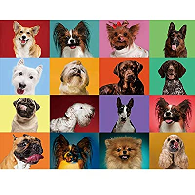 500 Piece Puzzles for Adults - Assorted Cute Dog Jigsaw Puzzles 500 Pieces Funny Puzzles by DYMT