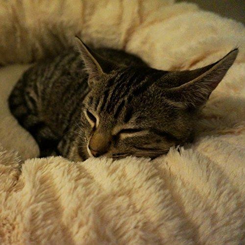 """Me & My Pets Herrlich weiches Haustierbett """"Donut"""" für Katzen, Welpen und kleine Hunde - 3"""