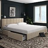 DHP Rose Velvet Tufted Upholstered Platform Bed with Storage - Ivory Velvet - King