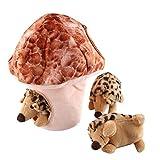Squeak Dog Toys, IFOYO Large Durable Hedgehog Hide and Seek Puzzle...