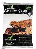 Rettili Planet Lettiera Sabbia di Calcio terrario Sand Sahara Cream 2,5kg