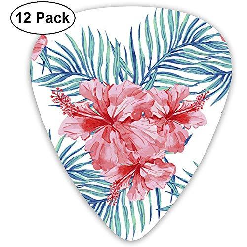Tropische Zierpflanzen 12er Pack Gitarren Plektren, E- und Akustikgitarren