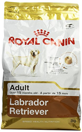3 KG Royal canin labrador retriever adult hondenvoer