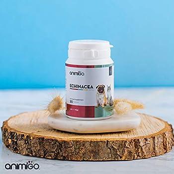 Animigo Complément Alimentaire pour Chien et Chat - à Base d'Echinacée Plante Naturelle pour Le Systeme Immunitaire du Chien et du Chat - 840mg par Capsules - 30 Capsules