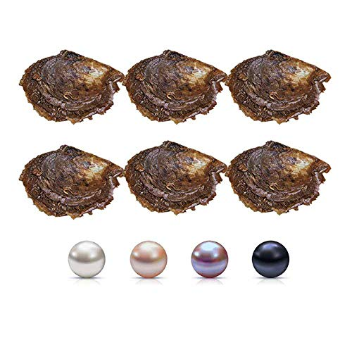 NY Jewelry Cerylle 7-8mm Mixed Colored Akoya Saltwater Cultured Pearl Oysters for DIY Jewelry Making, Pack for 5 Pcs(White, Pink, Purple, Black)
