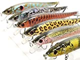 6 Hard Baits Fishing Lures Plus Free Tackle Box Slow Floating Tight Wobble Weight Transfer Jerkbait HM262SKB