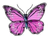 dekojohnson extravaganter Schmetterling aus Glas in Metallrahmen Wanddeko Wandbild Glas-Deko Wandobjekt Metallschmetterling Moderne Wanddekoration lila 25cm