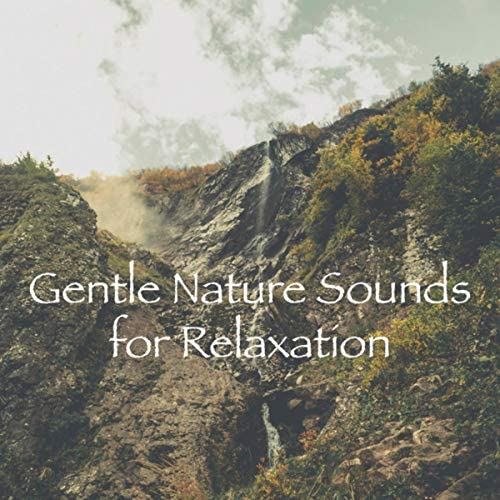 Rain Sounds Nature Collection, Rain Sounds Sleep & Nature Sound Series