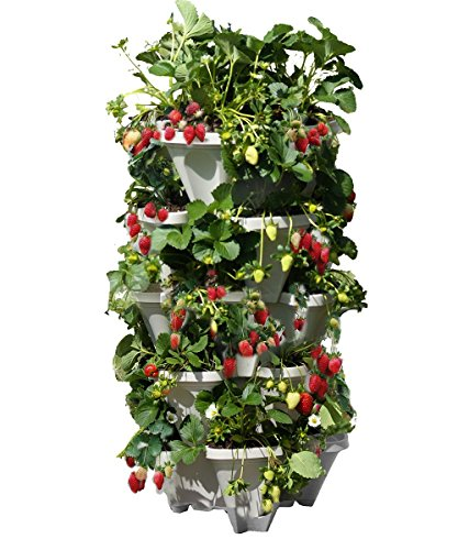 Mr. Stacky 5 Tiered Vertical Gardening Planter, Indoor & Outdoor