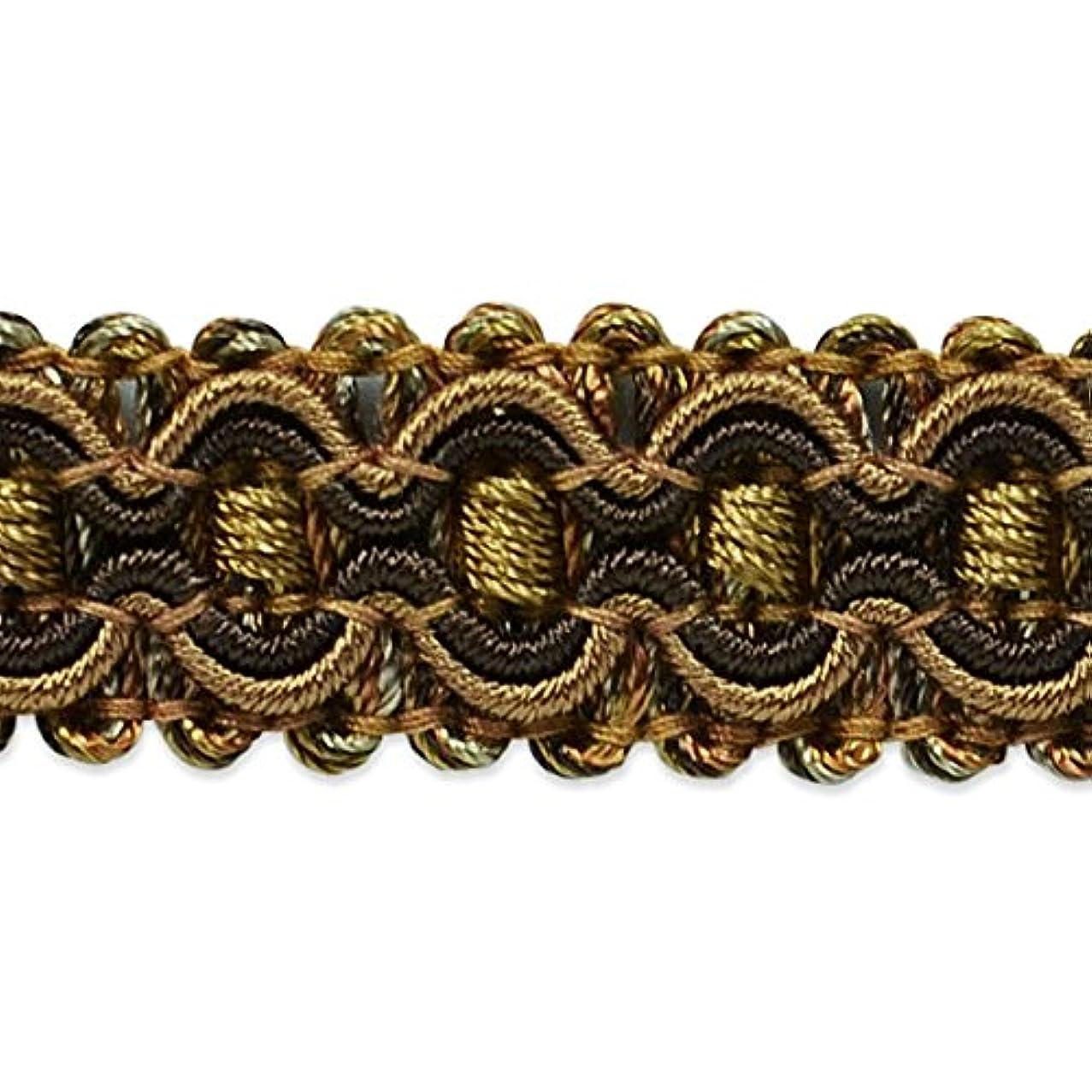 Expo International Gabrielle Decorative Braid Trim Embellishment, 20-Yard, Brown/Cinnamon