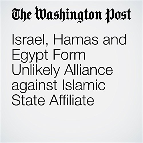 Israel, Hamas and Egypt Form Unlikely Alliance against Islamic State Affiliate audiobook cover art