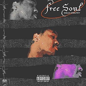 Free Soul (Rebirth)