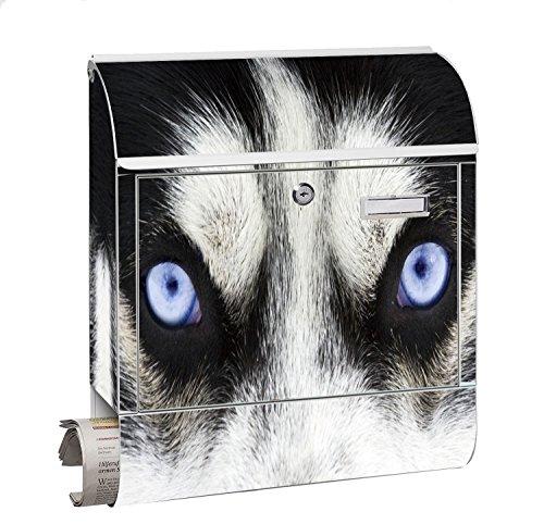 Design Motiv Briefkasten Maxi mit Zeitungsfach Zeitungsrolle für A4 Post slk shop Groß Augen Husky