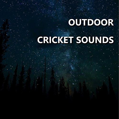 Utopian Outdoor Cricket Sounds