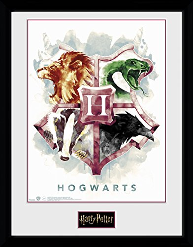 Poster Harry Potter Marca GB eye