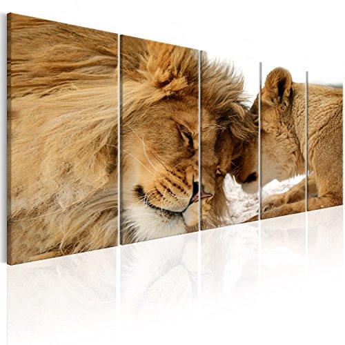 murando Cuadro en Lienzo León 200x80 cm Impresión de 5 Piezas Material Tejido no Tejido Impresión Artística Imagen Gráfica Decoracion de Pared Naturaleza Animal Paisaje g-B-0061-b-n