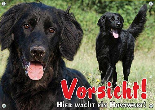 Petsigns Hovawart schwarz - Hunde Warnschild - Metallschild - 1A Qualität - bis DIN A3, DIN A4