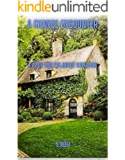 A Chance Encounter : A Pride and Prejudice Variation