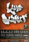 Limp Bizkit Gold Cobra 2012 - Original Konzertposter,