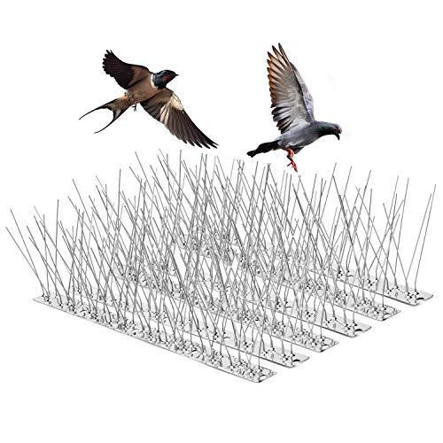 9.9 Metro Pinchos Antipalomas, OneSight Anti Pájaros Jardin Repelente Pájaros Control de Aves Protección, Cubre Picos Puntas Antipájaros en Acero Inoxidable para Disuasión de Aves,Gaviotas, Gato,30PCS