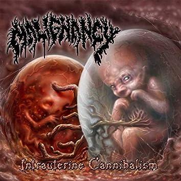 Intrauterine Cannibalism