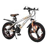 FUFU Bicicleta for niños de 20 Pulgadas, Adecuada for niñas y niños de 9 a 14 años, con Mudguard, Handbrake, 3 Colores (Color : C)