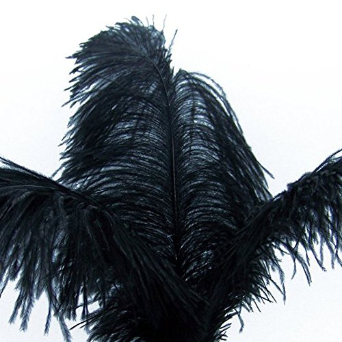 """KOLIGHT 10pcs Ostrich Feather Black 12""""-14"""" Natural Feathers Wedding, Party,Home,Hairs Decoration"""