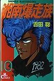 湘南爆走族 10 (ヒットコミックス)