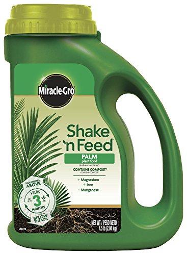 Miracle-Gro 3002910 Shake 'N Feed Engrais à libération continue pour palmier