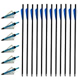VKEDA 20 Inch Carbon Crossbow Bolts 12 Pack and 6 Pack Hunting Broadheads kit, Carbon Crossbow Arrows for Hunting and Outdoor Practice (Blue)