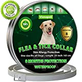 ✅FITS ANY DOG: The collar is made of a high quality waterproof material, pliable, smooth and attractive. It does not stretch out with wear nor falls off with activity. This sturdy collar features a one size fits all design with a secure lock and seve...