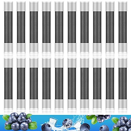 DBL プルームテック互換 カートリッジ ブルーベリー メンソール タバコカプセル装着可 20個入り M1