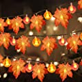 3 Pack Thanksgiving Fall Decorations Pumpkin Maple Leaf…