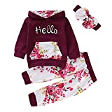1-5T Girl Tracksuit Flower Print Pullover Hoodie Legging Pants Winter Outfit Set