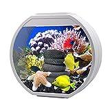 XLSQW Acuario de Vidrio Tanque de Peces pequeños Goldfish Bowl Eco-Cilindro de Escritorio, con filtros de Las lámparas de la Bomba de Agua, para el Ministerio del Interior de Mesa Cubierta,Blanco,L