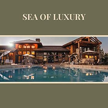 Sea of Luxury